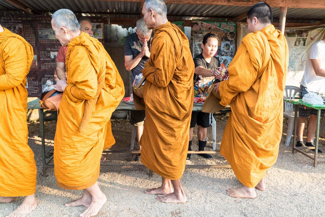 monk chorus line / wat pha luang ta bua, thailand