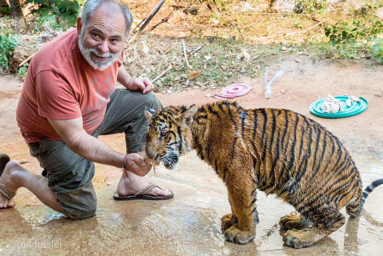 feeding kitty / wat pha luang ta bua, kanchanaburi, thailand