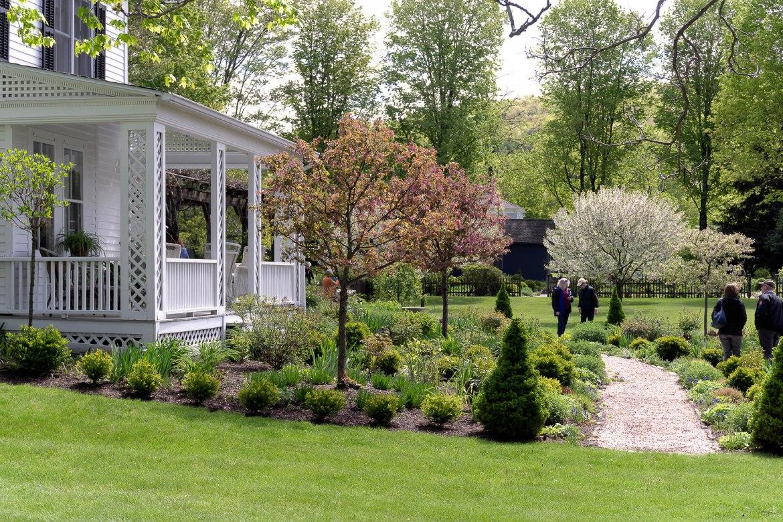 Coltsfoot Garden-2