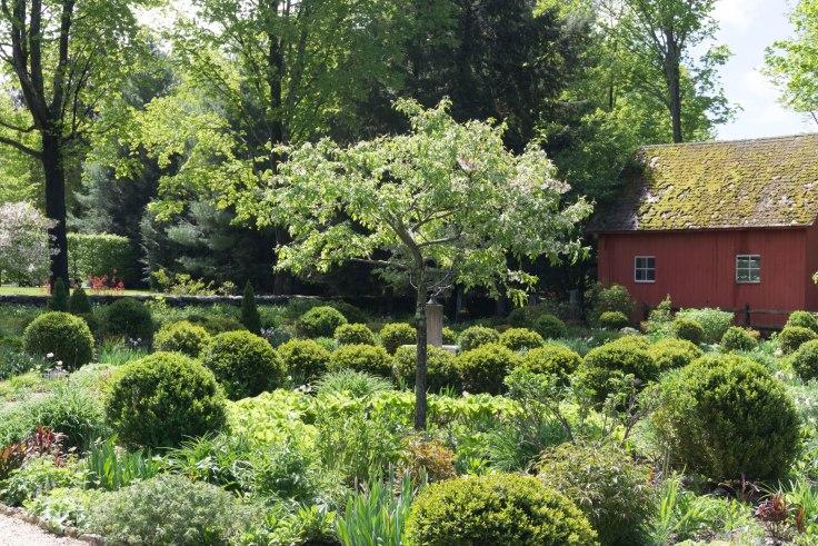 Coltsfoot Garden-4