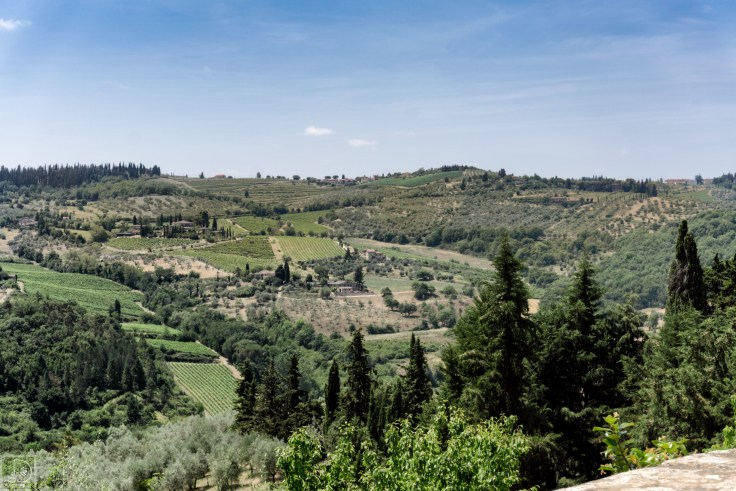 Villa Vignamaggio-1