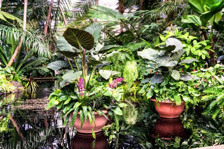 planters-1