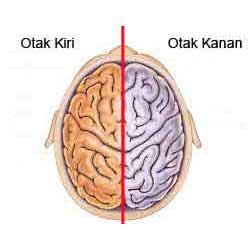 Nutrisi dan Vitamin untuk Daya Ingat Otak