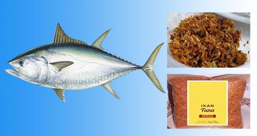 Resep Membuat Abon Ikan