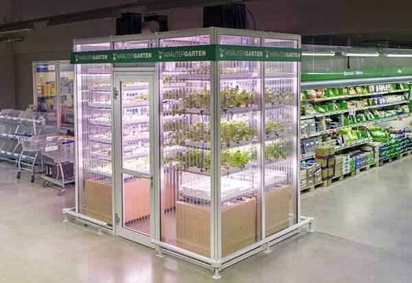 Infarm kebun di supermarket metro berlin