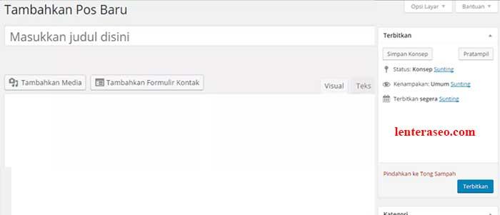 visual editor wordpress blank