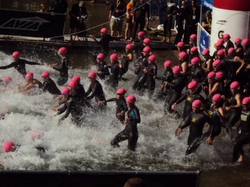30th Annual Wildflower Triathlon - 70 3 - LentineAlexis