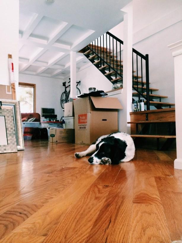 Mid Unpacking Nap