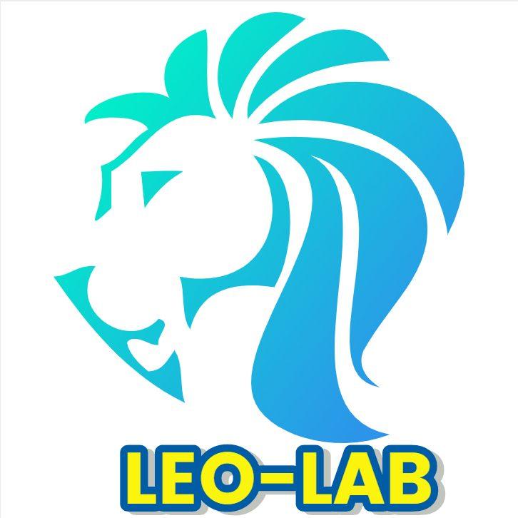 Leo里歐-網路理財實驗室