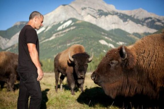 Blaeberry Valley Buffalo Ranch