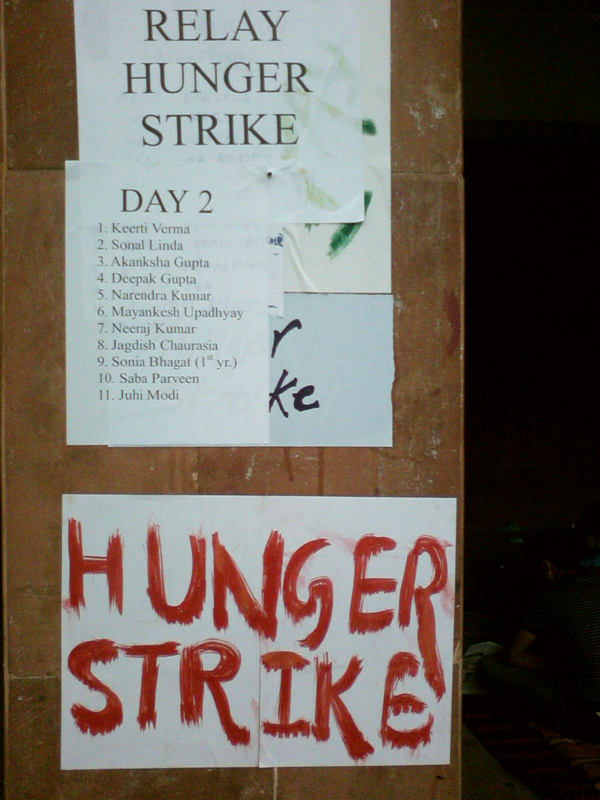 the HUNGER STRIKERS