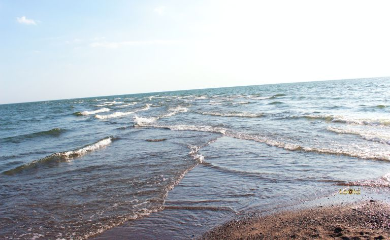 img_0962-point-pelee-copy