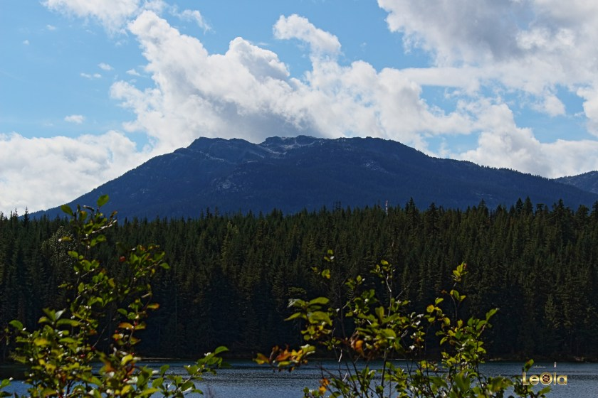 IMG_6908 Whistler copy