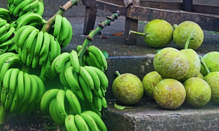 IMG_8530 Green banana & Breadfruita.JPG