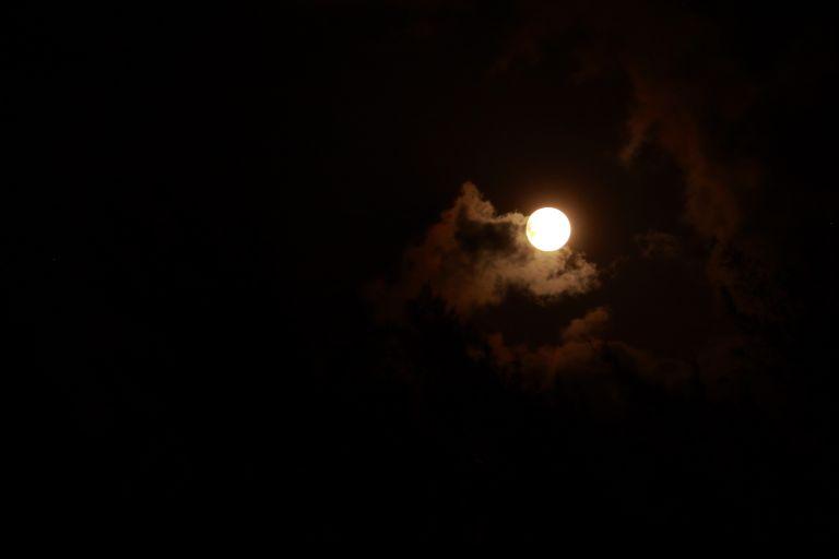 IMG_0487 Blue moon