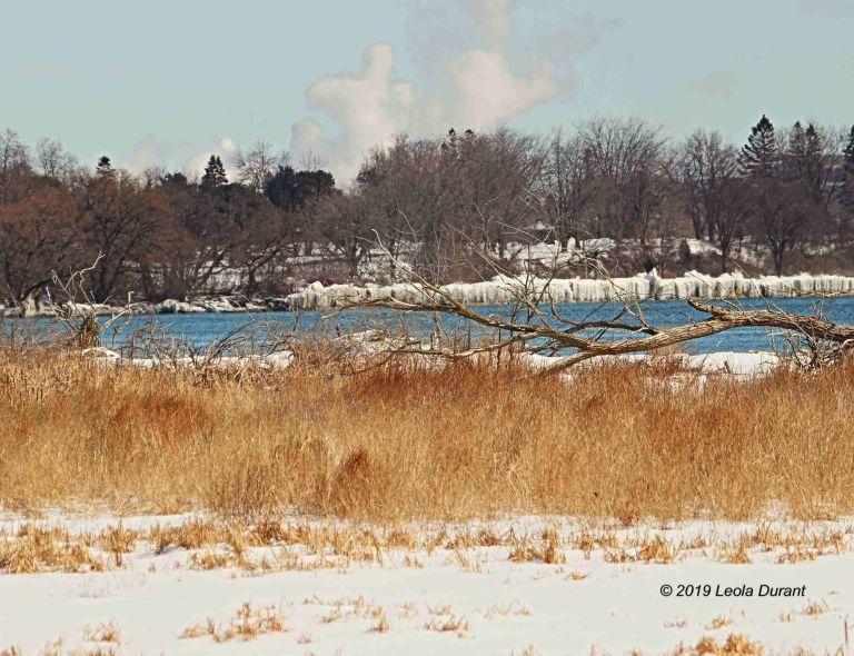 Winter Landscape copy.jpg