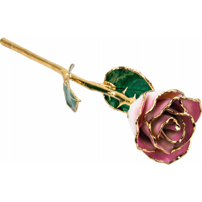 Lacquered Cream Pink Rose with Gold Trim from Leonard & Hazel™