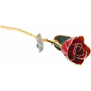 Lacquered Red Rose With Gold Trim from Leonard & Hazel™