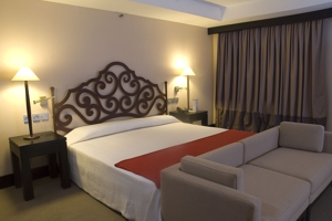 hotel-parque-central-torre-room_1