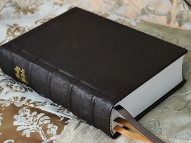 Hardcover Kangaroo Bible