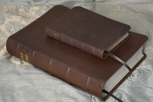 Two Bibles rebound in glossy chocolate soft-tanned goatskin