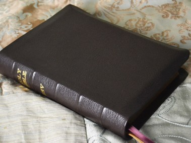 Mocha River Grain Goatskin Bible