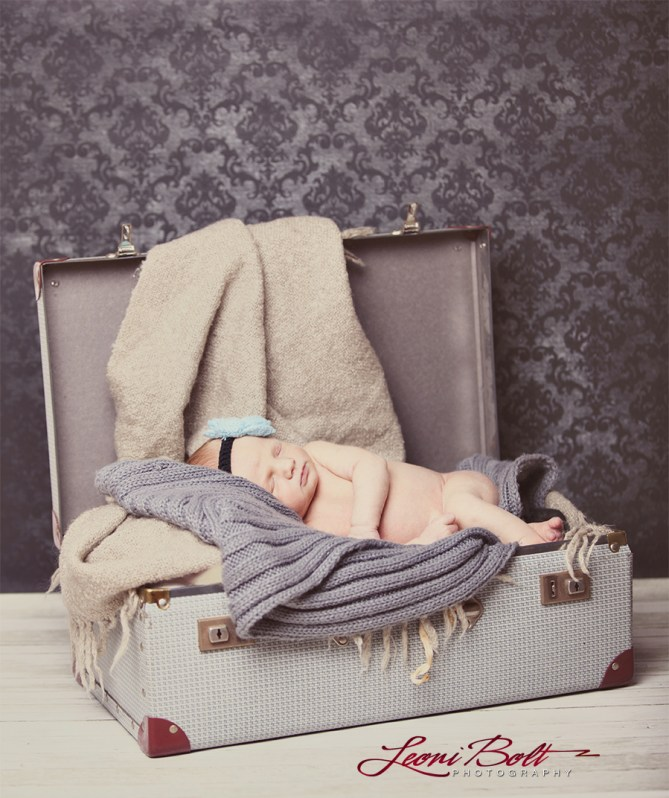 newborn in a suitcase