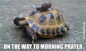 Morning Prayer Meme