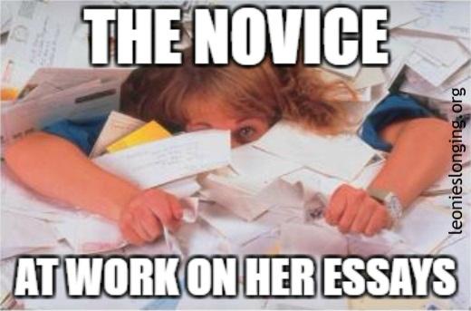Novice working on essays