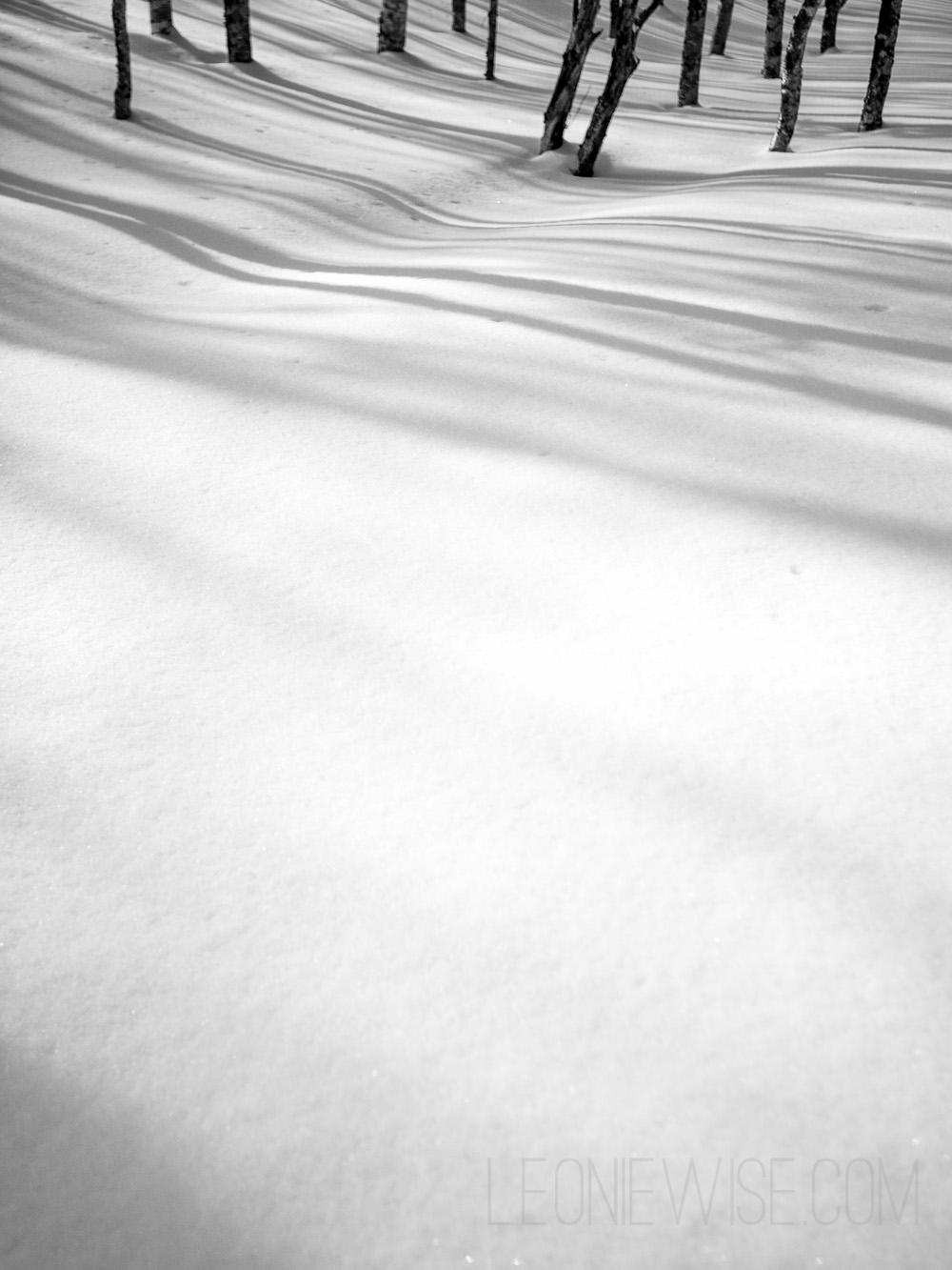 shadows-and-horizons-107