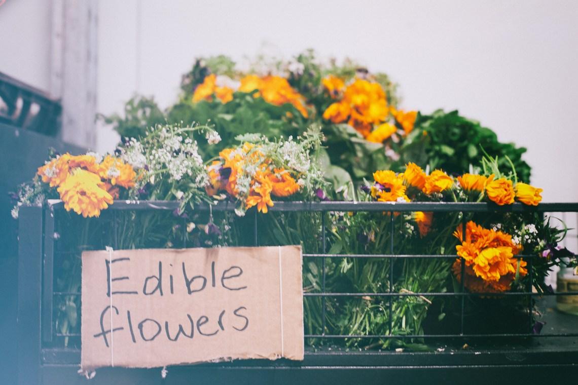 edibles-1