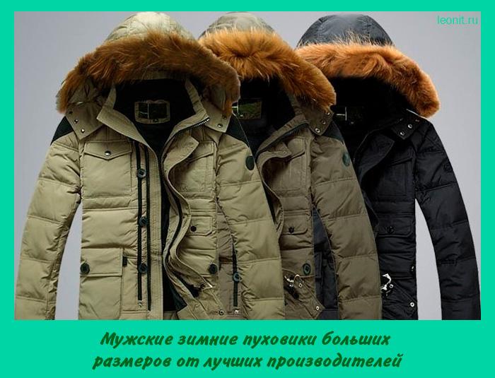 Мужские зимние пуховики больших размеров от лучших производителей ... 71df2d33e56