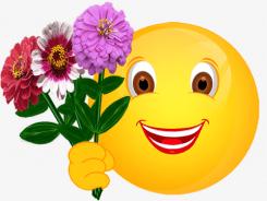 Smiley – drei Zinnien