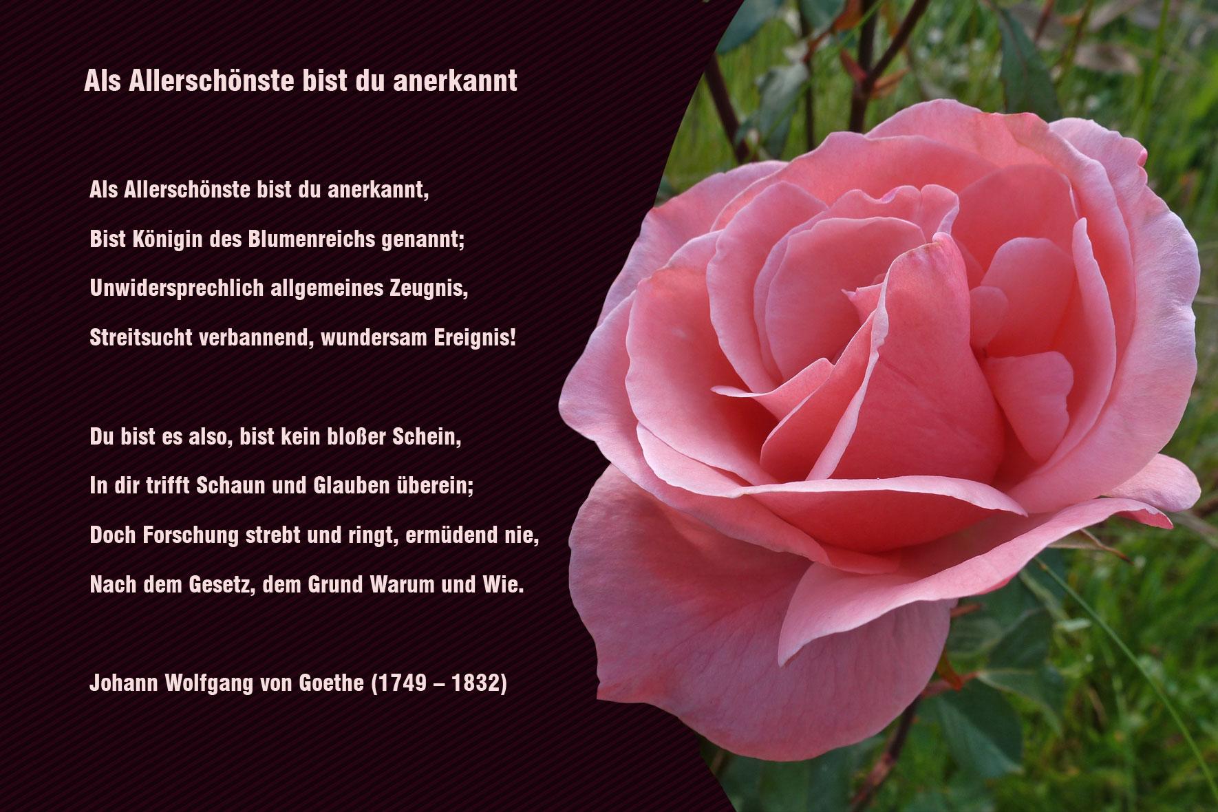 Mit Dir Gedicht Gilbert 2020 04 13