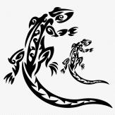 Salamander_3
