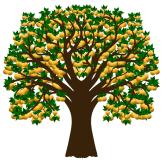 Apfelbaum 02