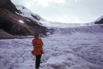Columbia Ice Field