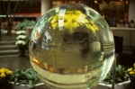 Crystal ball?