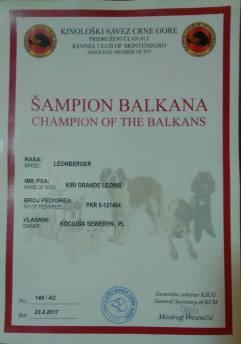 KIRI_Grande_Leonis_CH_Balkans