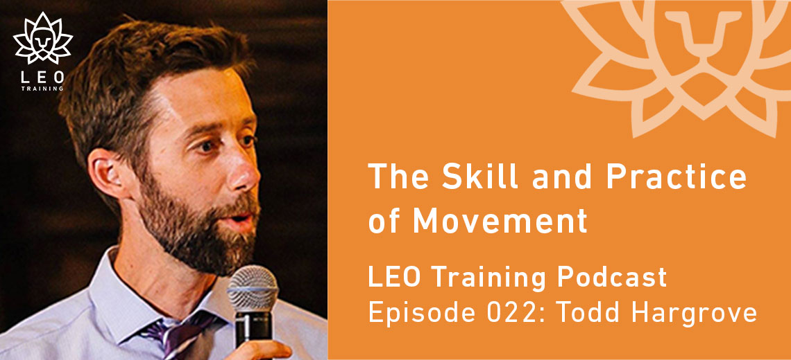 LT 022 | Todd Hargrove – The Skill and Practice of Movement