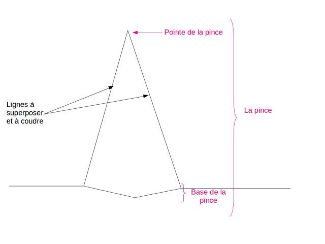 Représentation schématique d'une pince