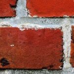cropped-wall-450106_1280.jpg