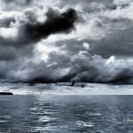 L'impact de l'acidification des océans sur les requins