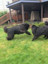 Maggy & Andy Playtime!!