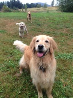 Mesa, Sammi and Riley