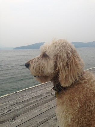 Taking in the view of the lake