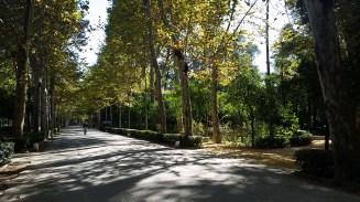 parque_maria_luisa