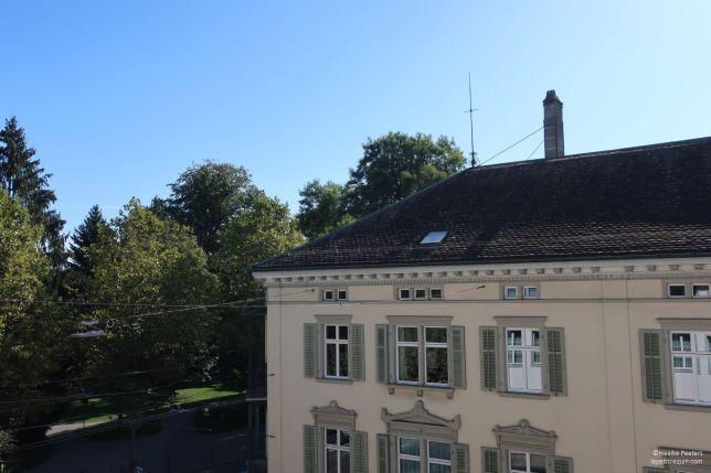Winterthur Obertor (Le petit requin)