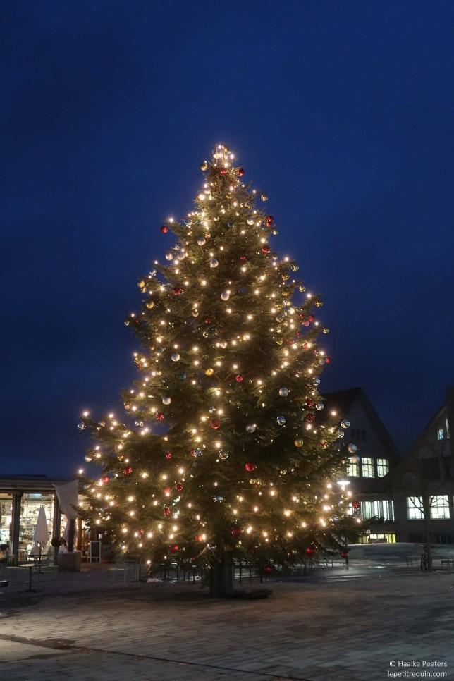 Kerstboom Meilen (Le petit requin)