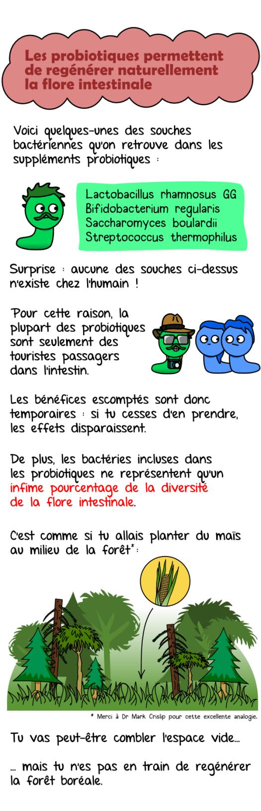 probiotiques05
